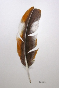 Toffee brown and white feather