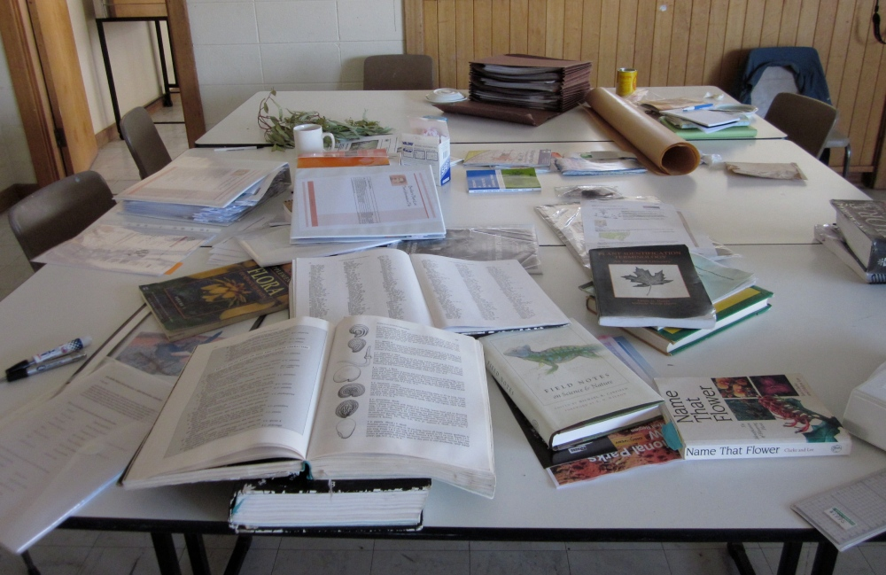 Some of the reference material we use for identification.
