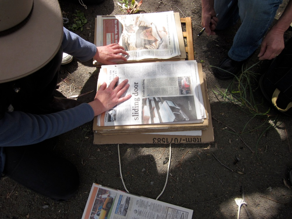 Folding the paper over the specimen -- not easy to do on windy days!