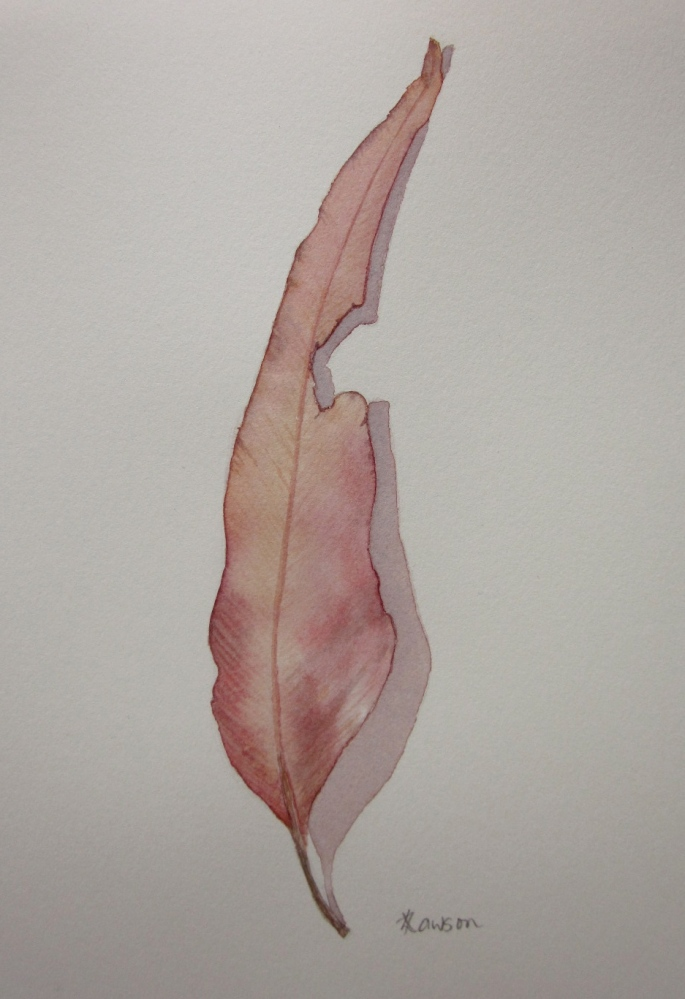 Read on to find out how to win this leaf painting.......