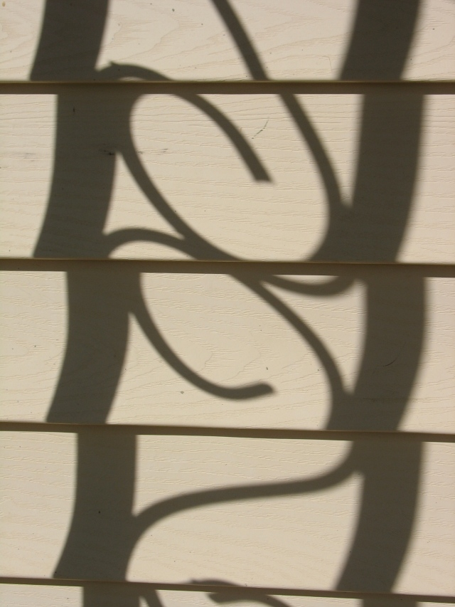 Shadows on the wall (Photo copyright: Anne Lawson 2011)