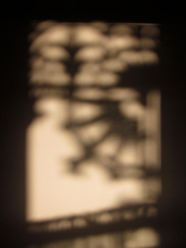Shadows of the cast iron lacework of my verandah (Photo copyright: Anne Lawson 2013)