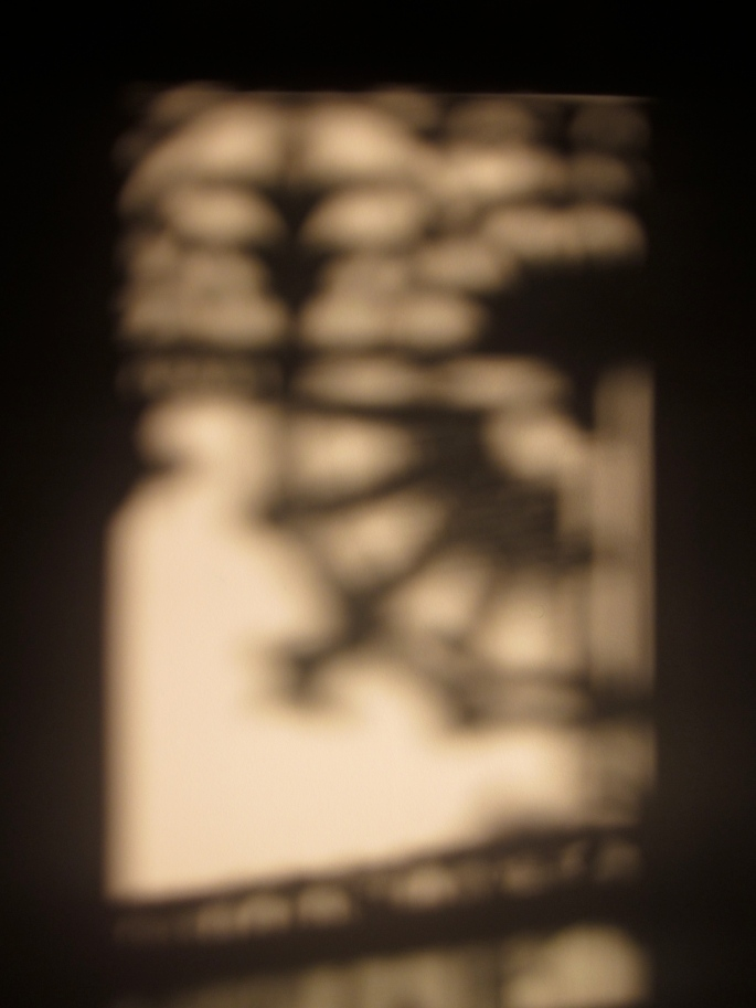 Shadows of the cast iron lacework of my verandah (Photo copyright: Anne Lawson 2013)