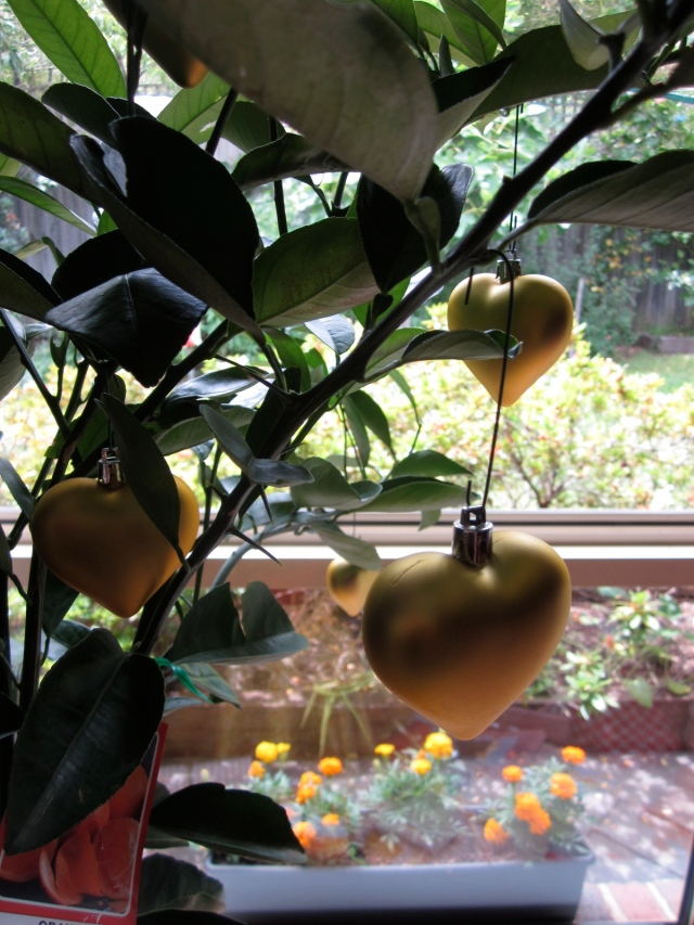 Naturally, the Christmas tree was a lemmon, with golden hearts dangling from its branches. (Photo copyright: Anne Lawson 2013)