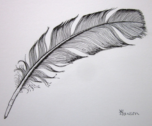 Ink feather (Photo and art work copyright: Anne Lawson 2014)