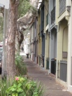 Chippendale street scape (Photo copyright: Anne Lawson 2014)