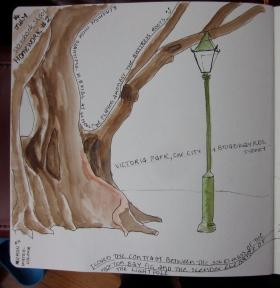A beautiful Morton Bay fig tree, drawn in Sydney. (Photo copyright: Anne Lawson 2014)