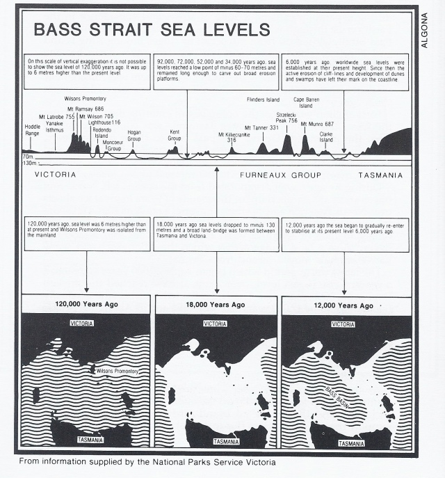 "Bass Strait sea levels over time. (Information from National Parks Service. published in Edgecombe's ""Discovering Flinders Island')"