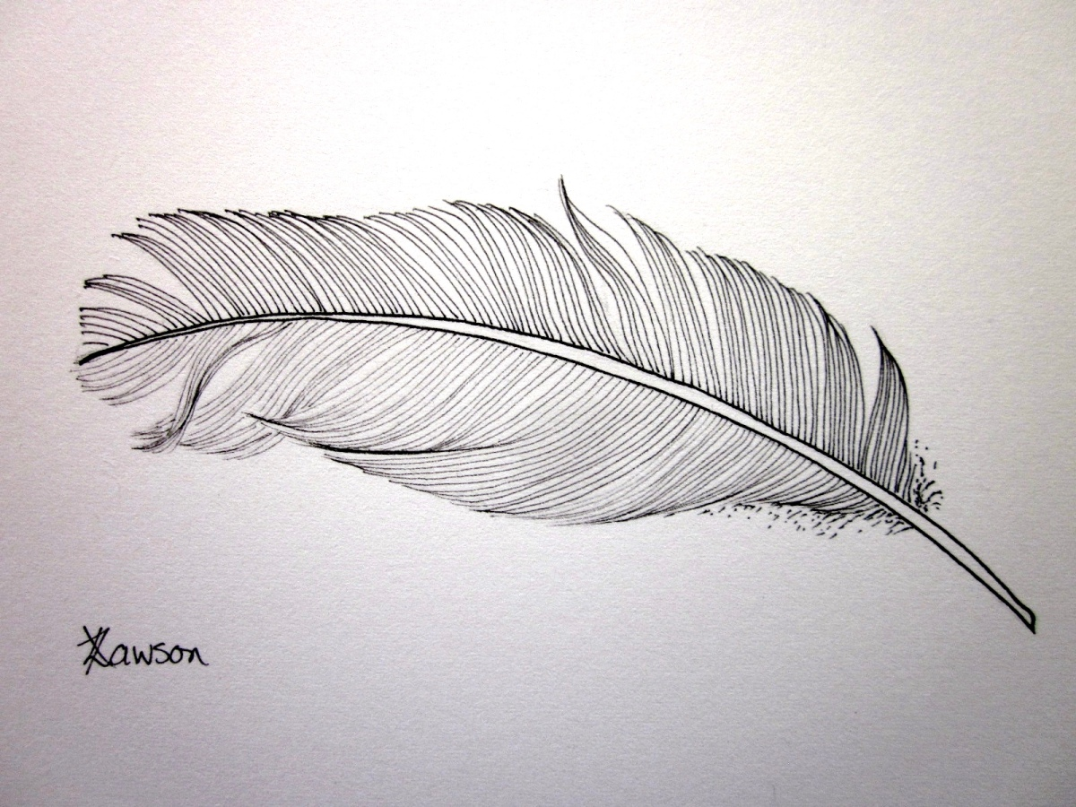 Feather drawing giveaway