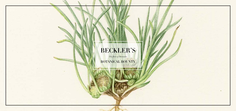 Beckler_invitation_digital