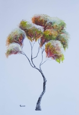 Tree drawing