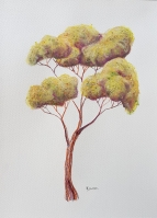 Oil pastel tree