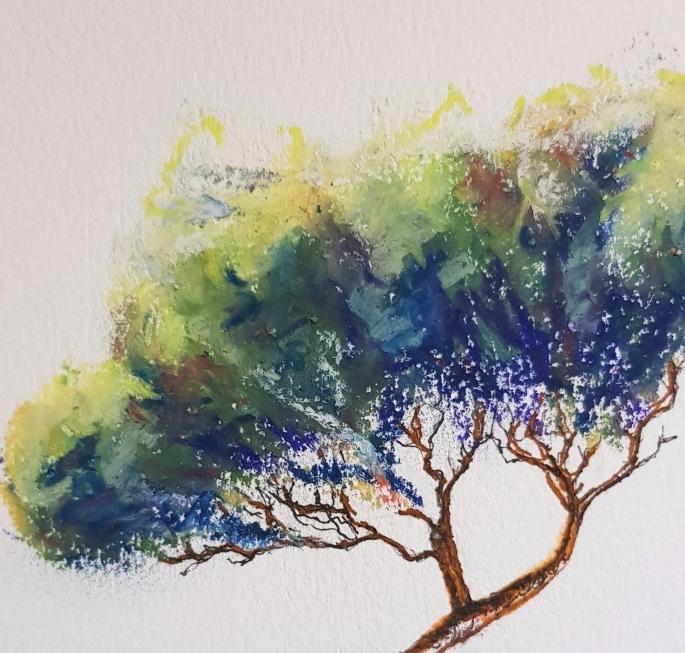 original tree drawing